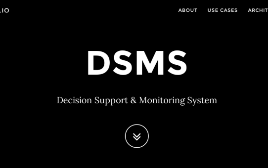 DSMS: Decision Support Monitoring Systems